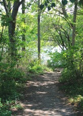 Eramosa Trail Path - Photo by Alanna Gurr